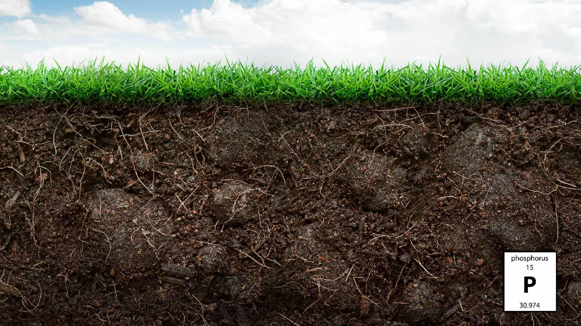 An Easy Guide to the Nutrients in Your Soil 2