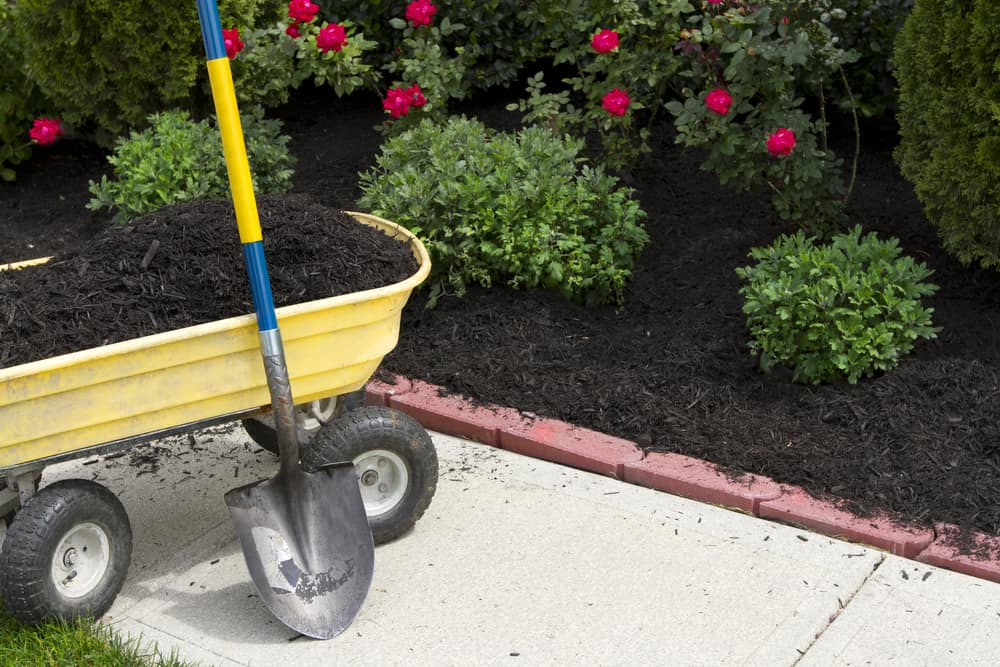 12 Ways to Conserve Water in Your Lawn 4