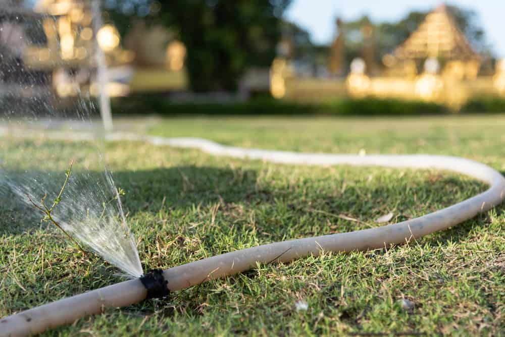 12 Ways to Conserve Water in Your Lawn 2