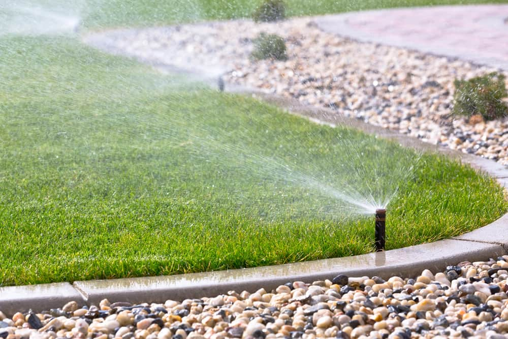 12 Ways to Conserve Water in Your Lawn 1