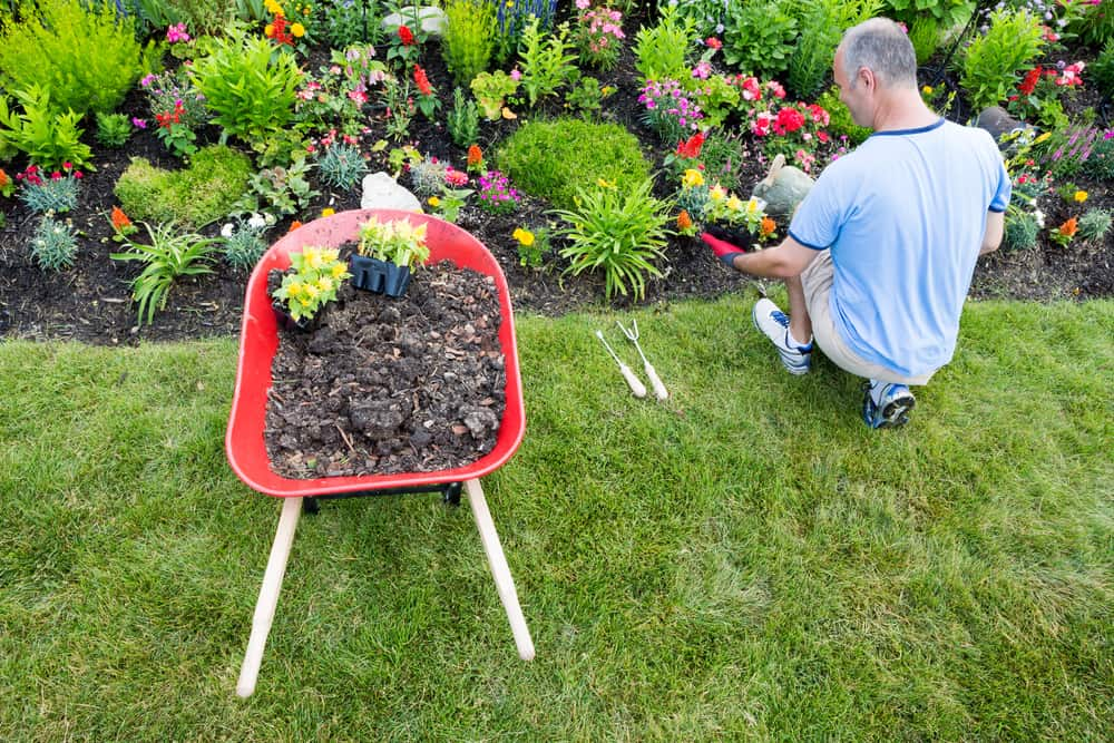 12 Ways to Conserve Water in Your Lawn 7