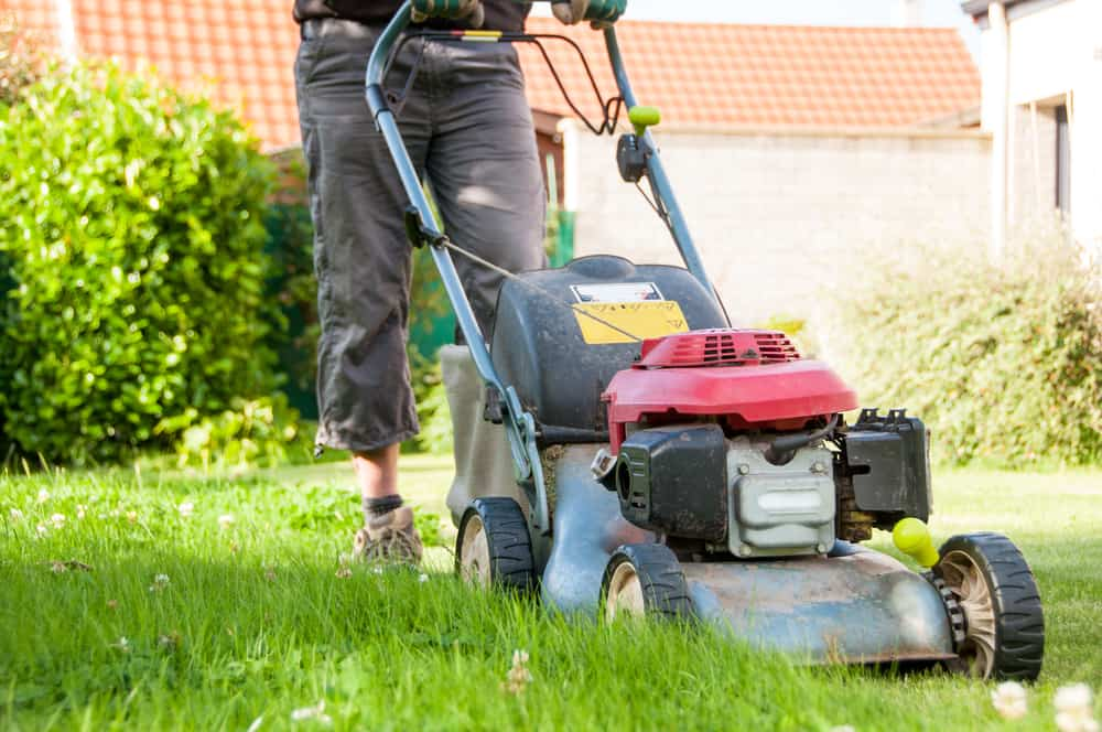 12 Ways to Conserve Water in Your Lawn 9