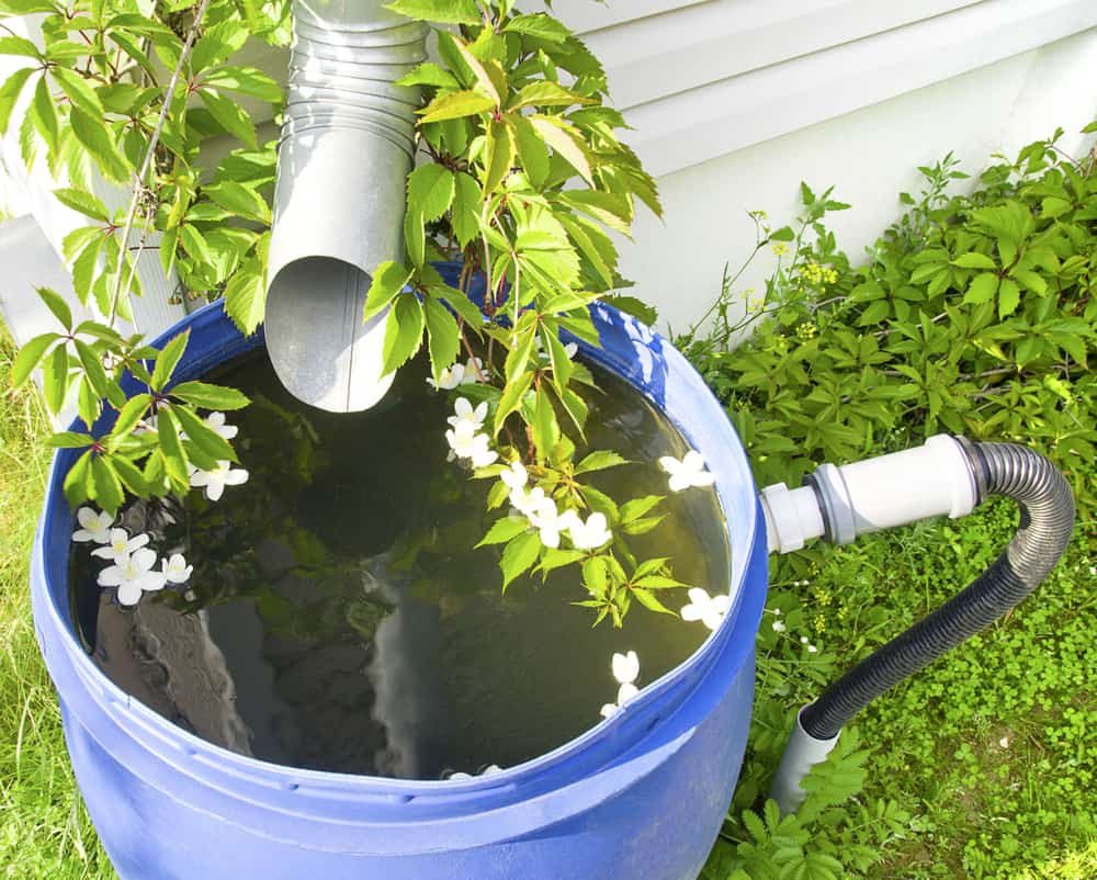 12 Ways to Conserve Water in Your Lawn 3