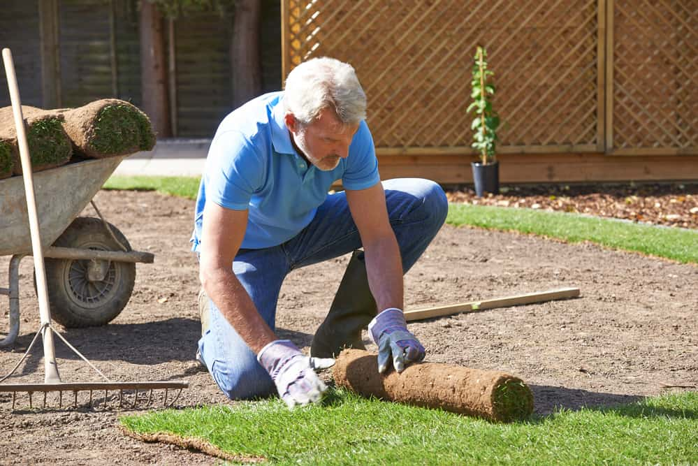 How To Lay Sod Yourself Lawnstar