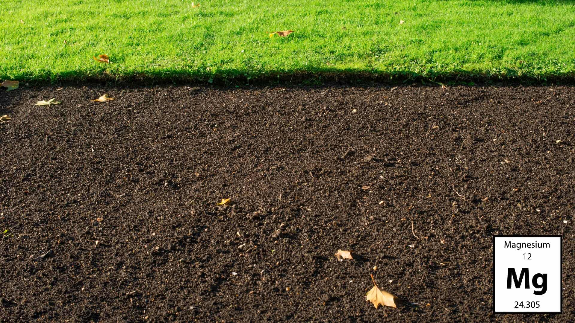 An Easy Guide to the Nutrients in Your Soil 5