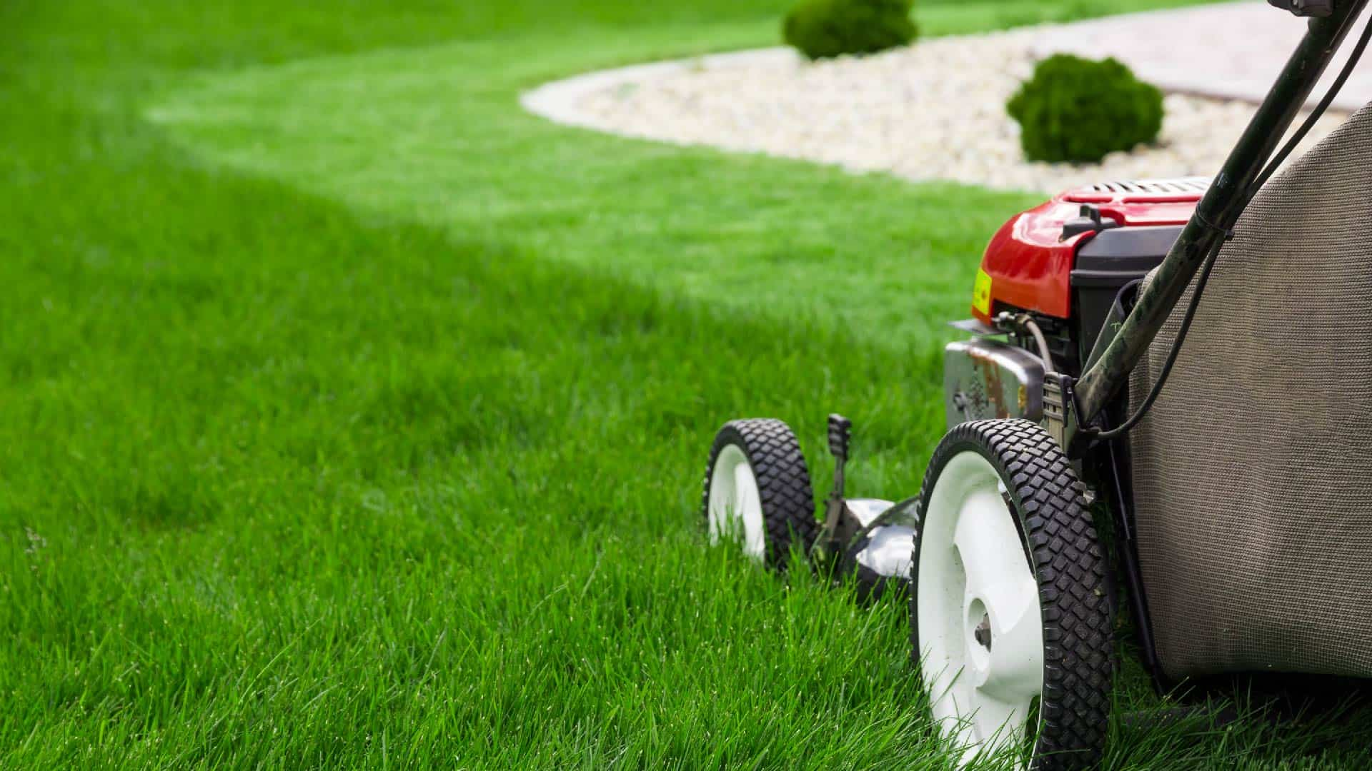 lawn mower on partially mowed lawn
