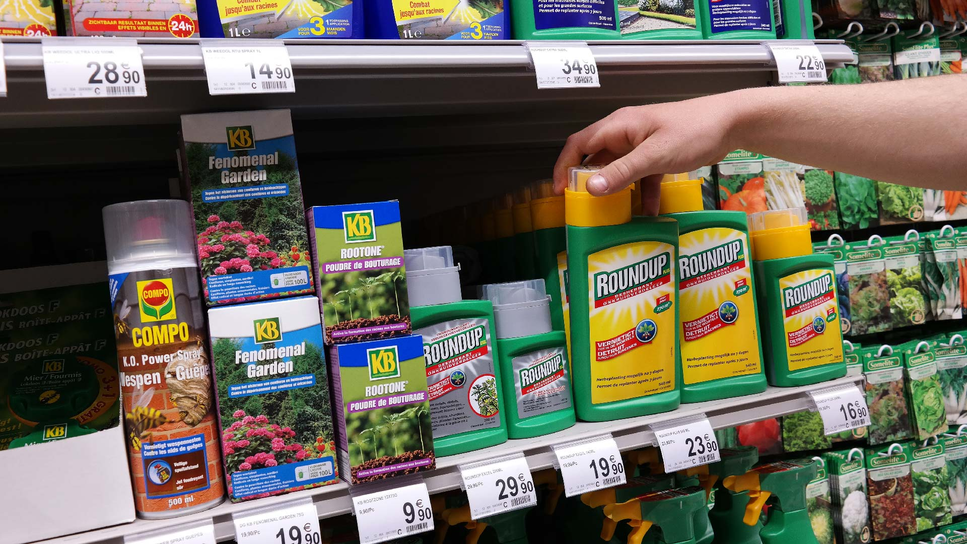 Lawn Safety | Beware of These Potentially Harmful Chemicals 1
