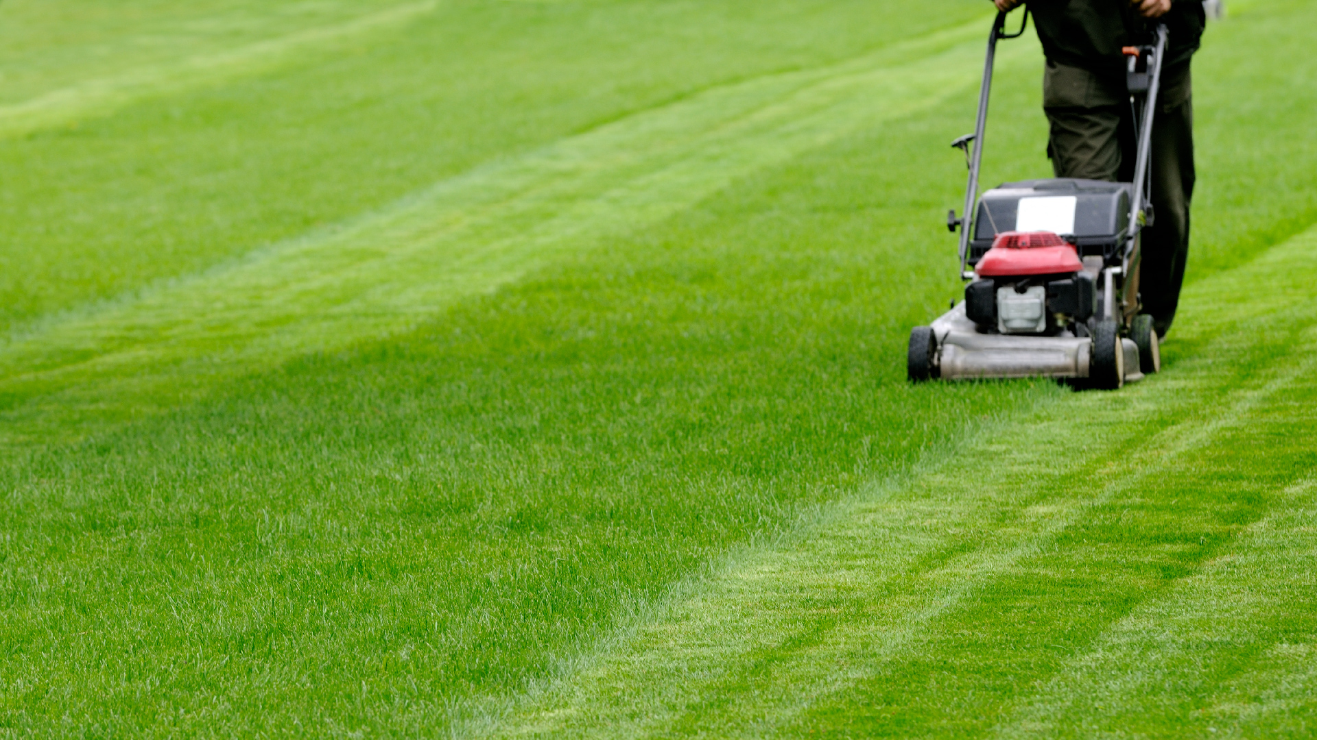 man mowing green lawn