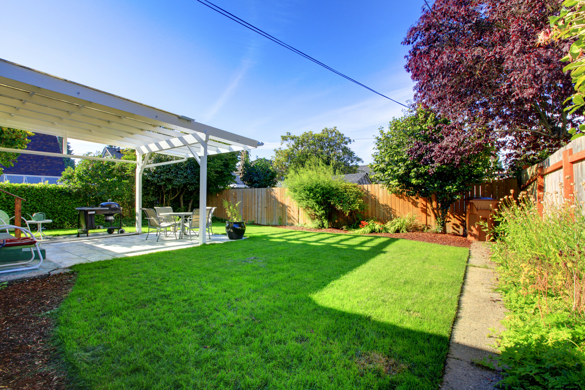 The Benefits of Using Liquid Fertilizer on Your Lawn 2