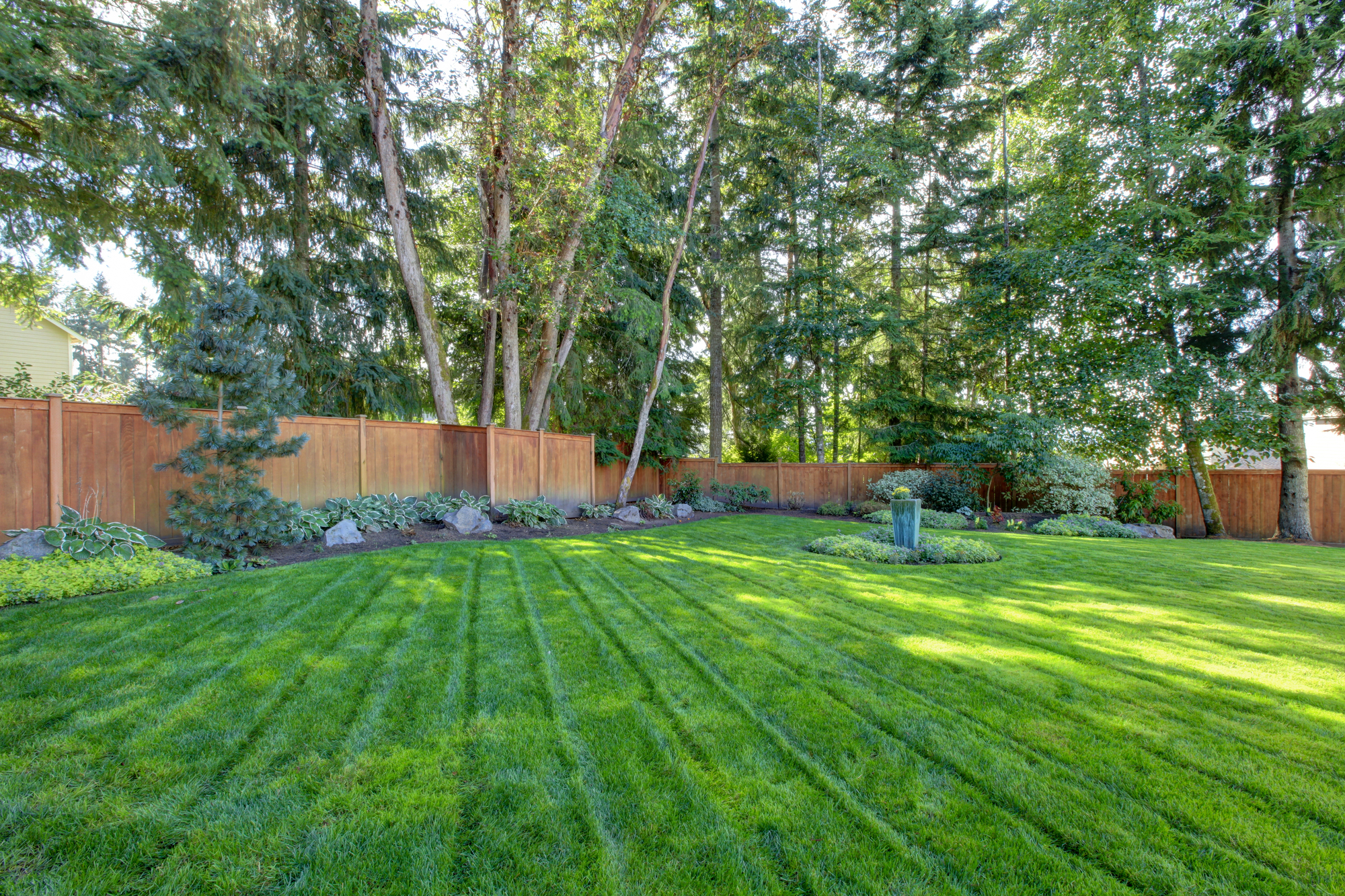 Large back yard with lots of trees and grass